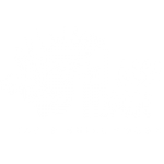 The-Loose-Moose-Tap-&-Grill-House_black-logo copy